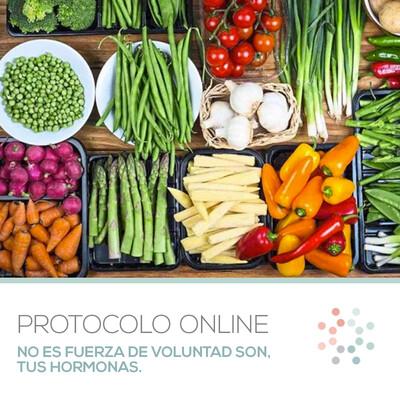 Protocolo Online Pregrabado