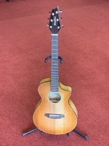 Breedlove Pursuit EX Companion