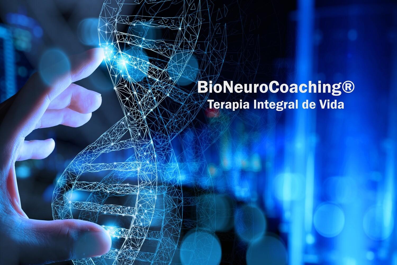 Pack de 4 Sesiones de BioNeuroCoaching