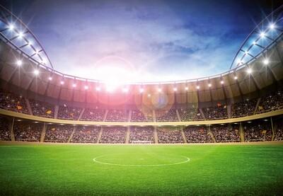 Stadium At Night Mural