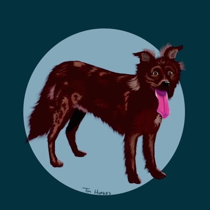 Cartoon Portrait of Your Pet