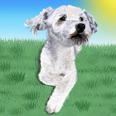 Realistic Portrait of Your Pet on canvas (40 x 40 cm)