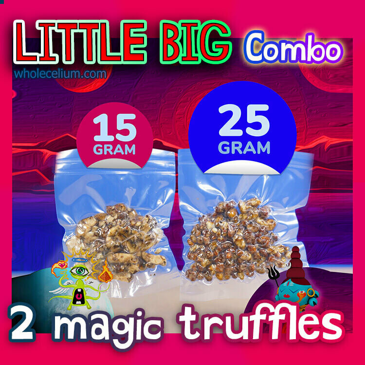 LITTLE BIG - Pack COMBO (2x)