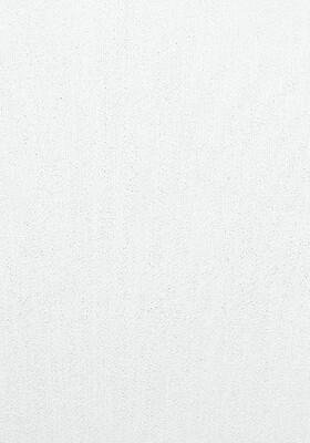 3580-7 Обои Эрисман флиз. 1,06м*10м