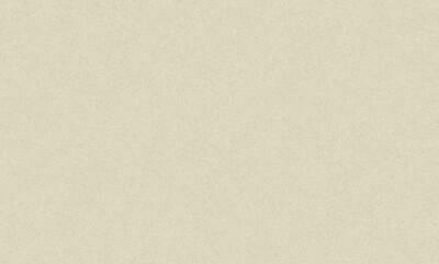 168331-01 Обои Индустрия флиз. 1,06м*10м