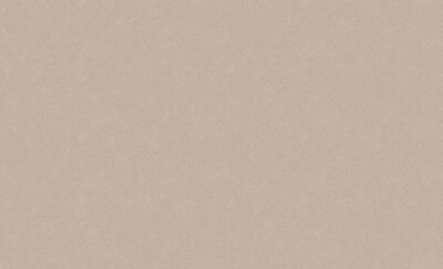 4544-6 Обои Эрисманн флиз. 1,06м*10м