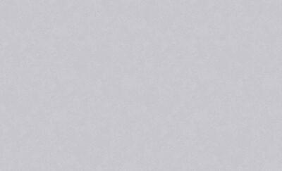 4544-7 Обои Эрисманн флиз. 1,06м*10м