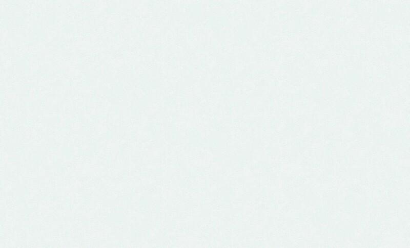 4544-3 Обои Эрисманн флиз. 1,06м*10м