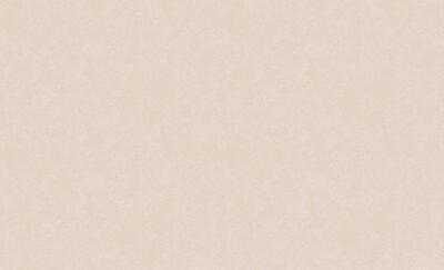 4544-5 Обои Эрисманн флиз. 1,06м*10м