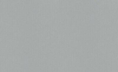 12000-10 Обои Erismann флиз. 1,06м*10м