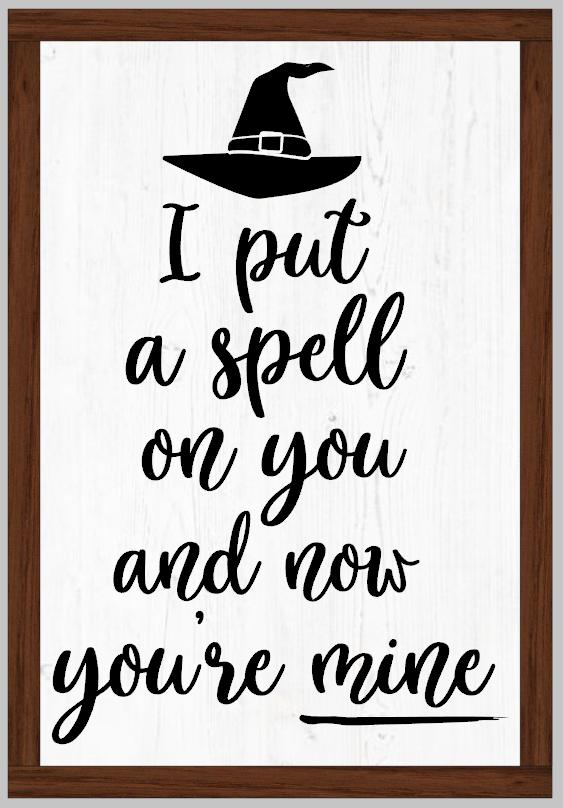 I put a Spell on You Framed Sign Hocus Pocus
