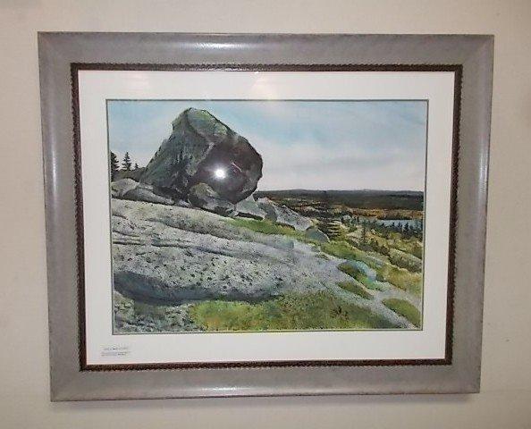 Lundy Barrens By Stephen Rhude