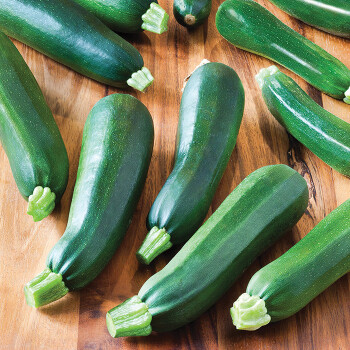 Black Beauty Zucchini Squash