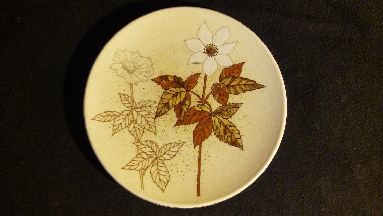 """Mikasa Indian Feast, Dinner Plate 10 7/8"""", Alpine Meadow Pattern # DE 865"""