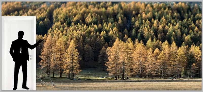 Autunno in Val Ferret