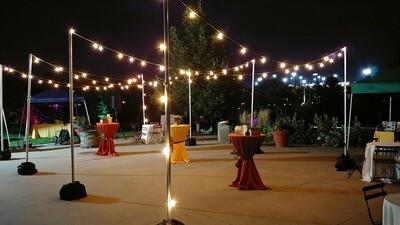 Market Lights 100ft 50/string
