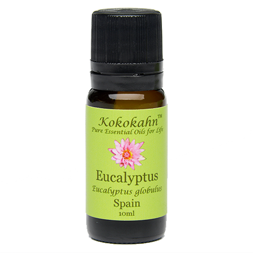 Eucalyptus Essential Oil