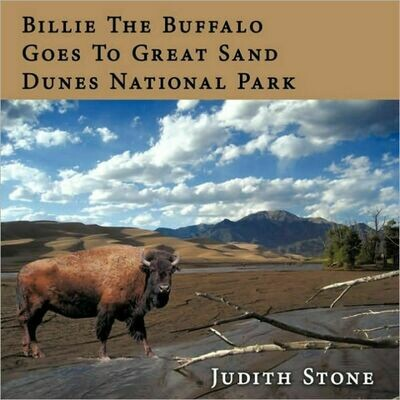 Billie the Buffalo Goes to Great Sand Dunes National Park