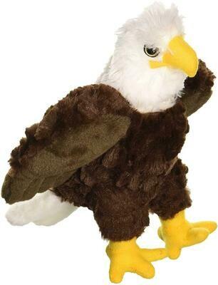 Mini Bald Eagle