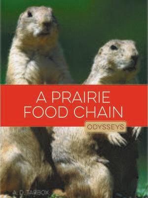A Prairie Food Chain