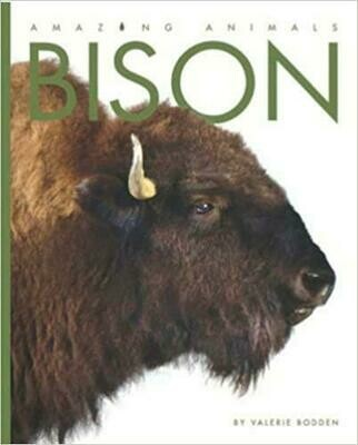 Amazing Animals: Bison