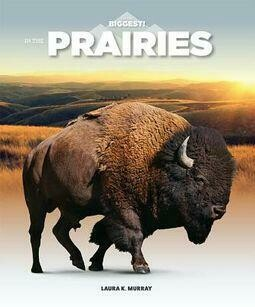 In The Prairies (I'm the Biggest)