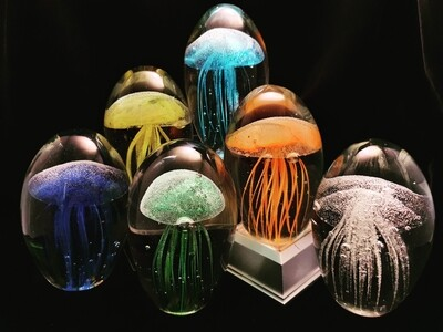 Jellyfish * Glow in the Dark