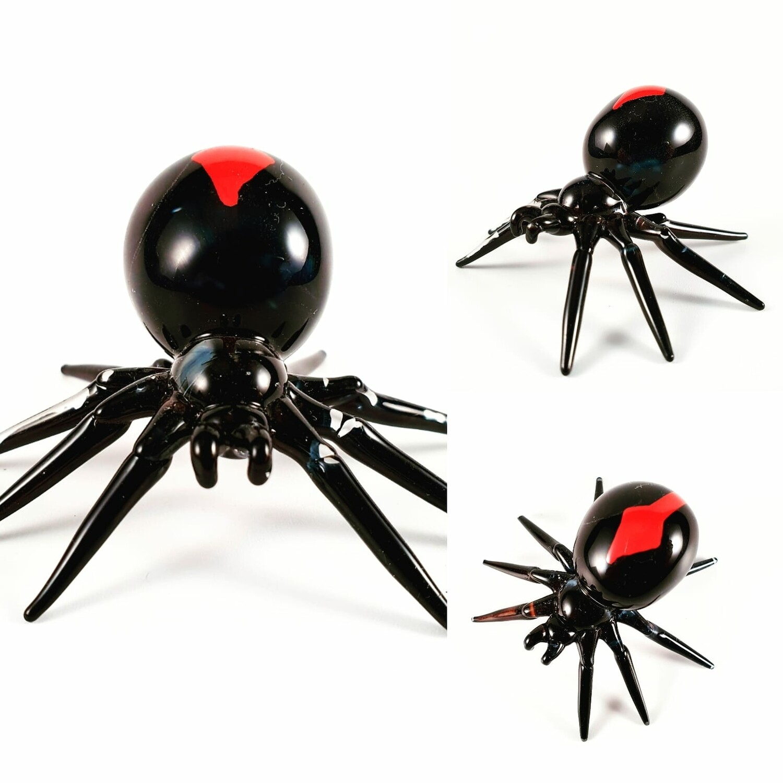 Redback Spider *