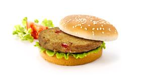 Bicky Vegi Burger 24x75g