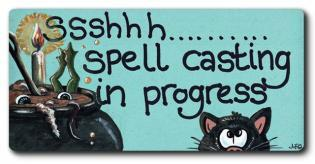 Spell Casting in Progress Fridge Magnet