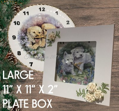 LARGE GIFT BOX  IDEAL FOR PLATES COMES SIZED 11 X 11 X 2 INCHES
