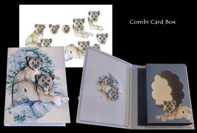 Lion Cubs Combined Card -Box PNC