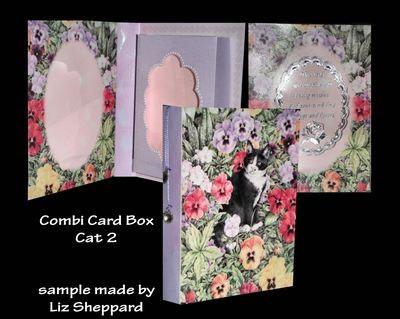 Cat 2 - Combi Card-Box PNC