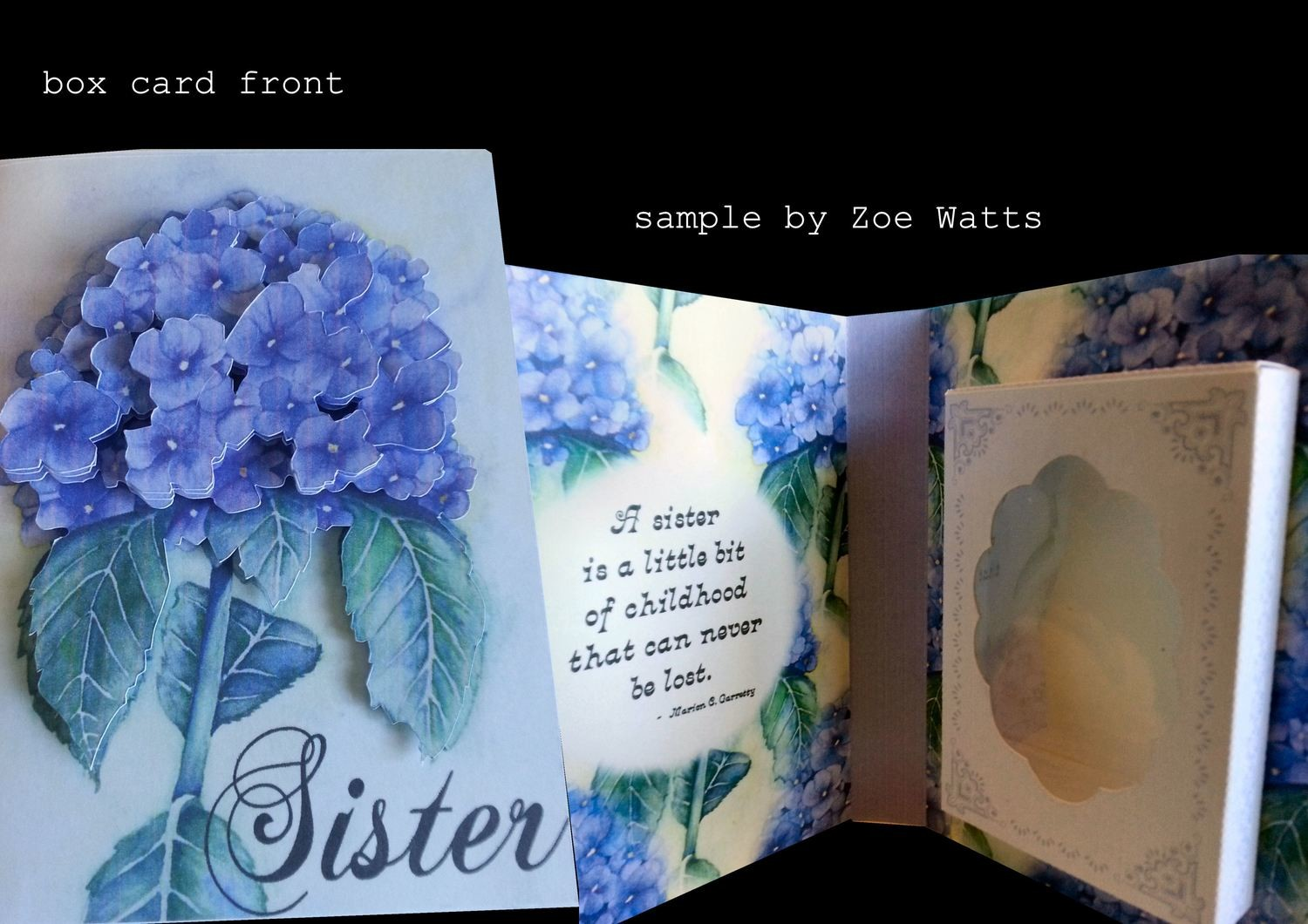 SISTER Combi Card/Gift Box  PNC