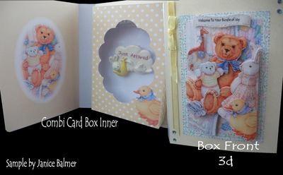 Baby Bear Combi Card Box PNC