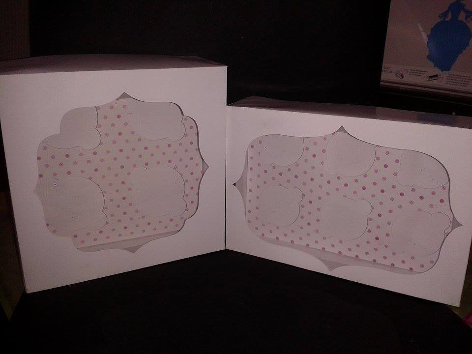 2 Mini Cupcake Boxes  one  for 4 and one for 6