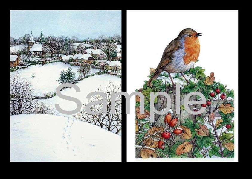 Robin Red Breast   Decoupage Print N cut for Cameo