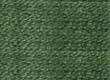 Madeira Silk Floss -- 1602 -- Light Forest