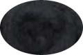HomeSpun Carded Wool Roving -- Black