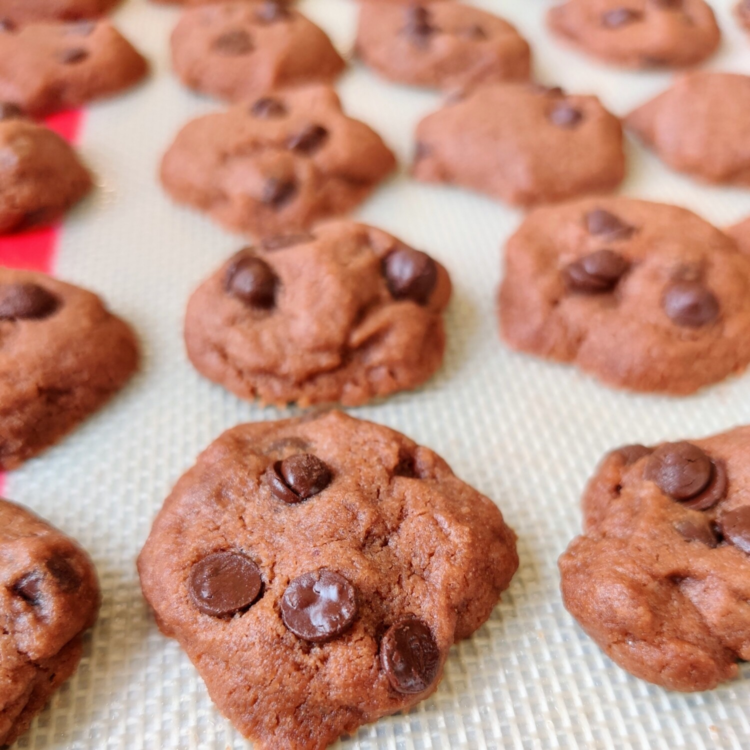 Double Chocolate Chip Cookies (50pc)