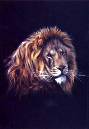 Lion on Black