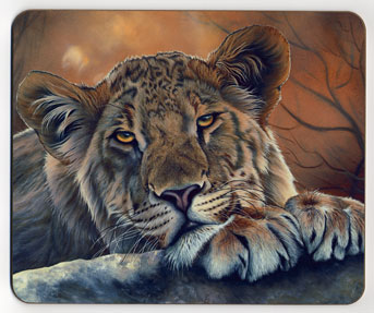 Lioness with Paws. Placemat