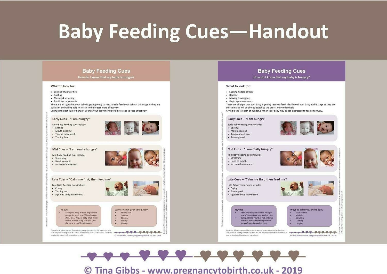 Handout: Baby Feeding Cues