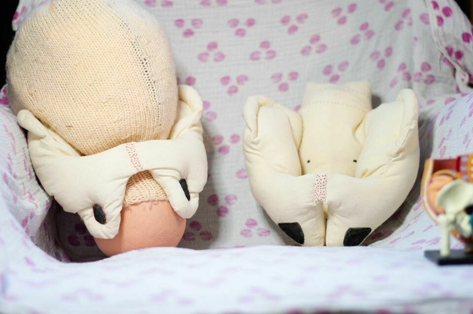 Cloth/Fabric Pelvis Model