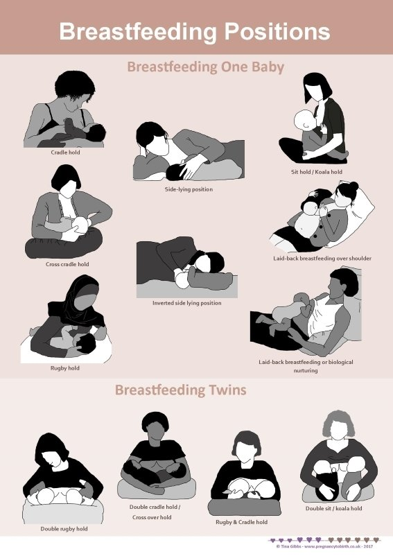 Breastfeeding positions - A2 poster incl. pdf handouts