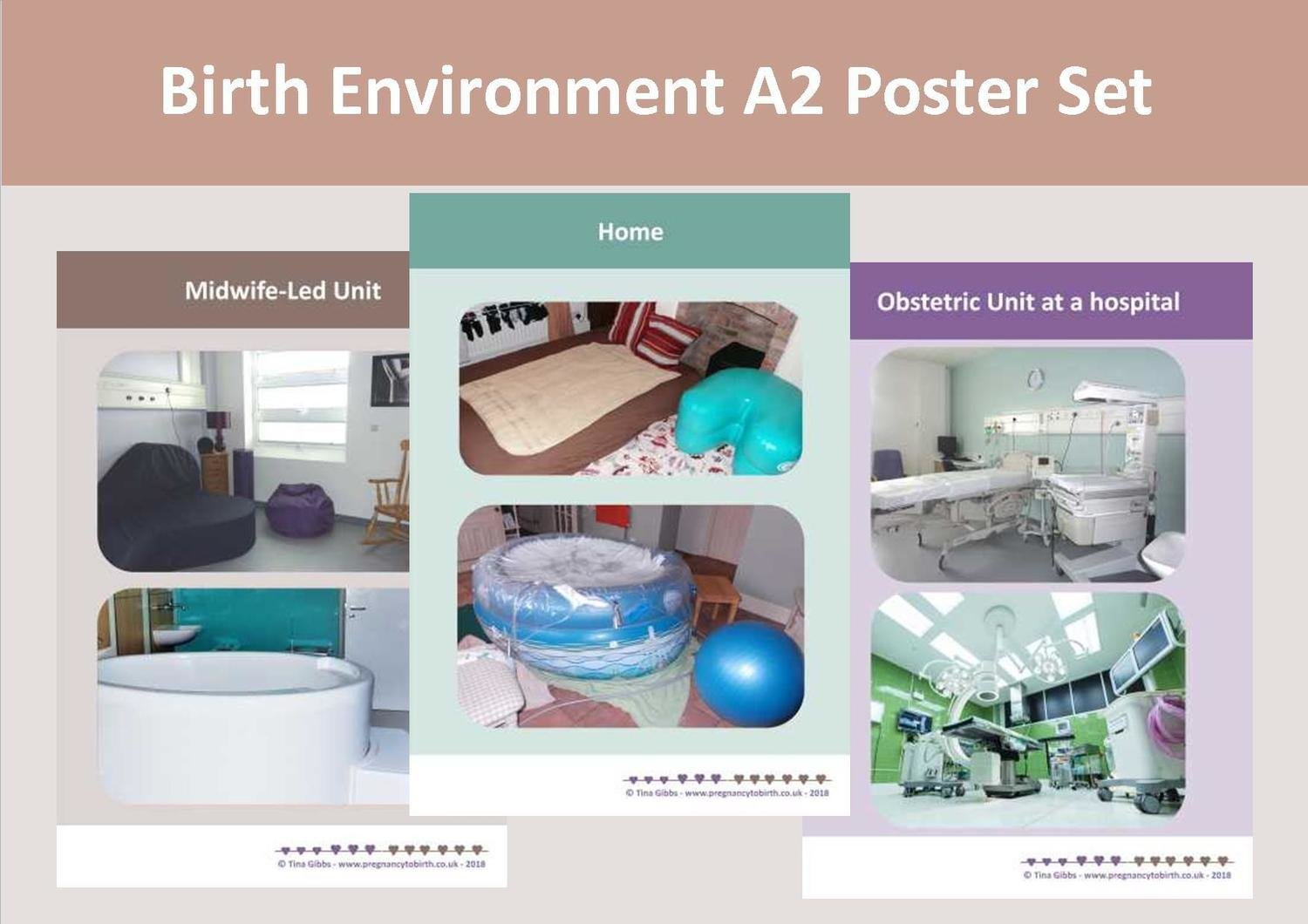 The Birth Environment - A2 poster set