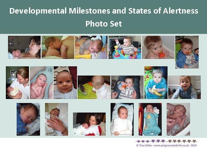 Newborn/Baby Developmental Milestones and States of Alertness and baby poop- 330gsm card set