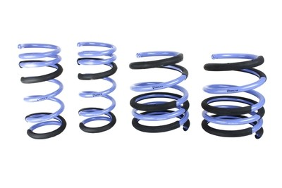 Honda Civic Type-R Lowering Springs