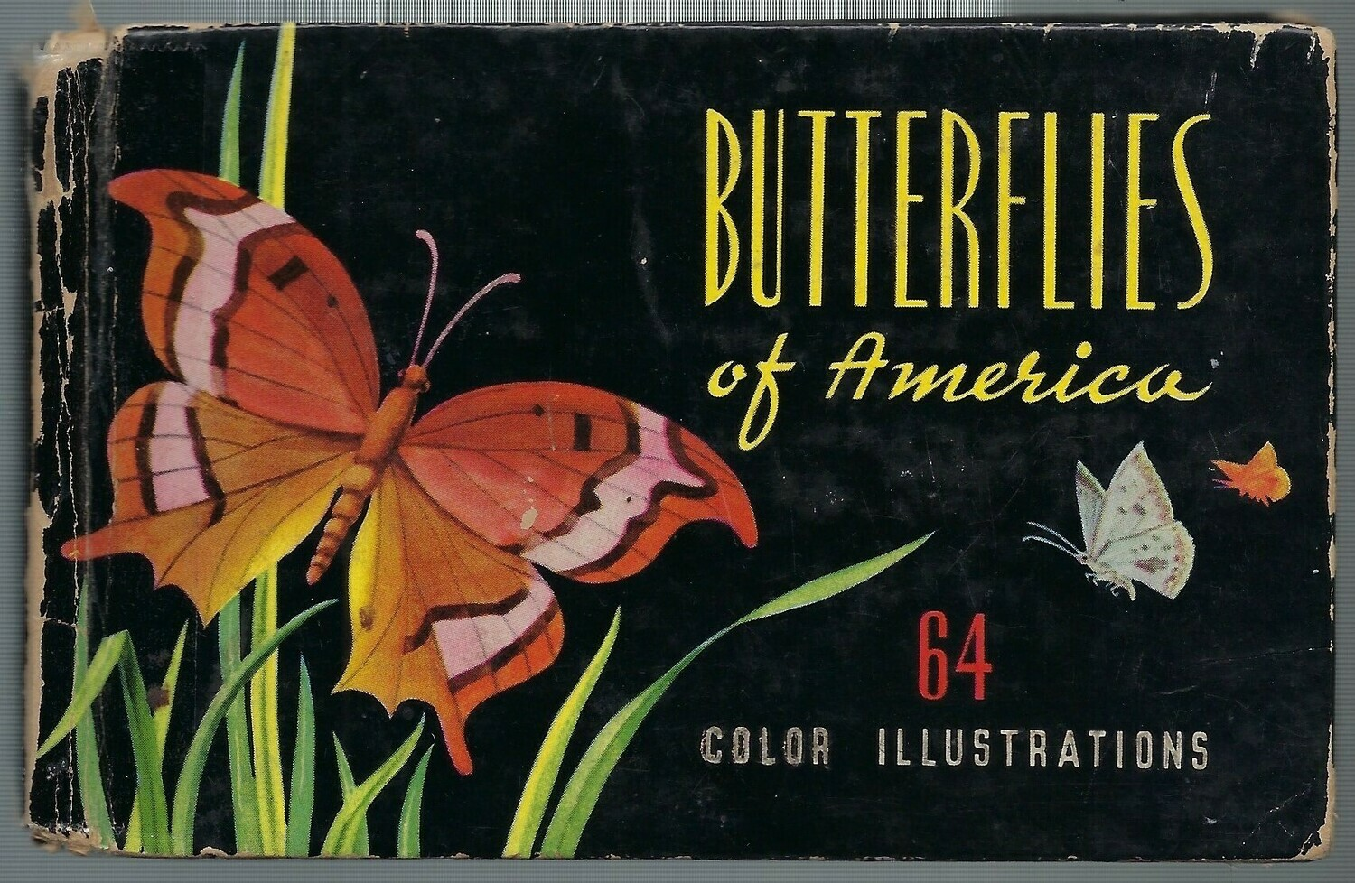 Mini butterfly book 1948 Instant Download 10 pages