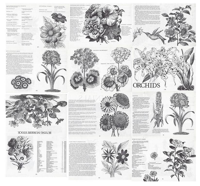 Vintage Plant Book collage pak Instant Download